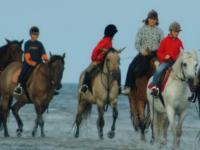 Mini  rajdy konne po plaży
