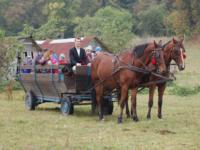 Wóz taborowy